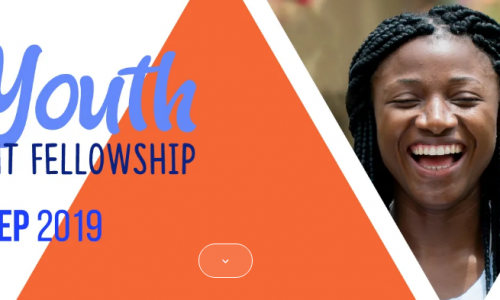 ALAFIA Youth Empowerment Fellowship
